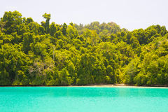 Idyllic beach along wild coastline with tropical forest, Indonesia Stock Photography