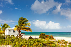 Idyllic beach at Caribbean. Idyllic tropical beach on Barbuda island in Caribbean with white sand, turquoise ocean water and blue sky Royalty Free Stock Photo