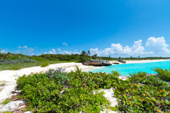 Idyllic beach of Caribbean Sea Stock Photography