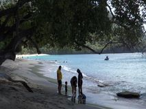 An idyllic beach in the caribbean. Tourists enjoying the sea on an island in the grenadines stock video footage