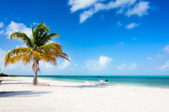 Idyllic beach at Caribbean Royalty Free Stock Images