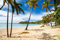 Idyllic beach at Caribbean. Idyllic tropical Caneel bay beach with white sand, turquoise ocean water and blue sky at Antigua island in Caribbean Royalty Free Stock Images