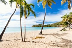 Idyllic beach at Caribbean. Idyllic tropical Carlisle bay beach with white sand, turquoise ocean water and blue sky at Antigua island in Caribbean Royalty Free Stock Photography