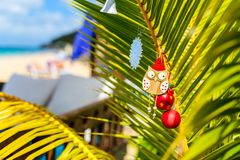 Idyllic beach at Caribbean. Idyllic tropical Caribbean beach with palm trees decorated for Christmas Stock Image