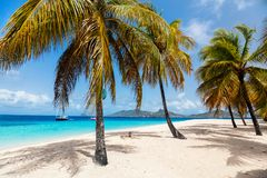 Idyllic beach at Caribbean. Idyllic tropical beach with white sand, palm trees and turquoise Caribbean sea water on exotic island in St Vincent and the royalty free stock photography