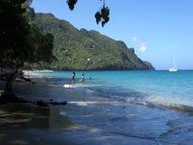 An idyllic beach in the caribbean stock video footage