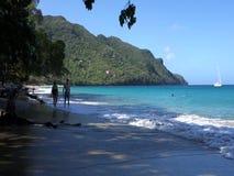 An idyllic beach in the caribbean stock footage
