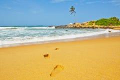 Idyllic beach Stock Photography