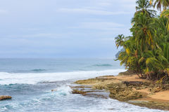 Idyllic beach Manzanillo Costa Rica. Idyllic tropical beach at Manzanillo Costa Rica Stock Photos