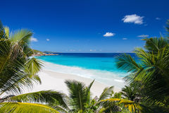Idyllic beach in Seychelles Royalty Free Stock Image