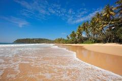 Idyllic beach. Sri Lanka Stock Image