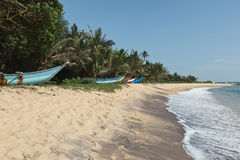 Idyllic beach. Sri Lanka Royalty Free Stock Images