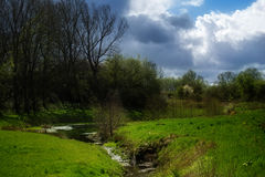 Idyllic brook flowing through a green meadow with trees and shru Royalty Free Stock Photos