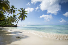 Idyllic Caribbean coastline Stock Photography