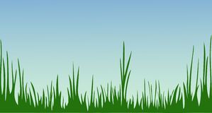 The idyllic cartoonish picture of a summer day. Morning at spring meadow. Green grass against the sky. The idyllic cartoonish picture of a warm summer day Royalty Free Stock Photo