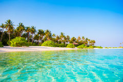 Idyllic clean perfect turquoise water and white Royalty Free Stock Photo