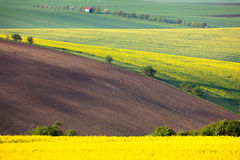 Idyllic Colorful fields landscape - countryside hills Royalty Free Stock Photos