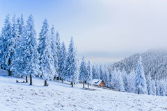 Idyllic cottage in winter Royalty Free Stock Images