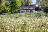 Idyllic country cottage Royalty Free Stock Photo