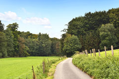 Idyllic country road in the sun. With copy space and forest. Single lane road through fields and pastures, nature background Stock Photos