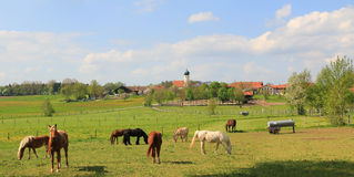 Idyllic country scenery with grazing horses and little village, Royalty Free Stock Images