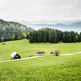 Idyllic dairy farms on alpine meadow Royalty Free Stock Photos