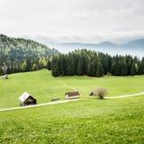 Idyllic dairy farms on alpine meadow Royalty Free Stock Photos