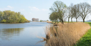 Idyllic Dutch landscape in springtime Royalty Free Stock Photo