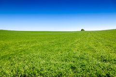 Idyllic english rural landscape. With scenic green field under a blue summer sky in Southern England UK Royalty Free Stock Photo