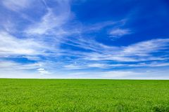 Idyllic summer landscape Southern England UK. Idyllic english rural landscape with scenic green field under a blue summer sky in Southern England UK Royalty Free Stock Image