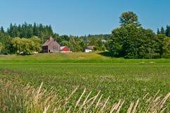 Idyllic Family Farm Landscape Stock Image