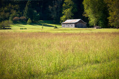 Idyllic farm house and wild flower meadow in morning Royalty Free Stock Image