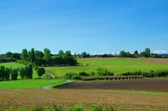 Idyllic Farm Landscape. With blue sky, green fields and trees Stock Photos