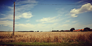 Idyllic Farmland Landscape. Image of a Landscape, works perfect For agricultural matters Stock Images