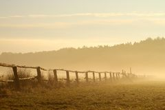 Idyllic fence on a misty field at sunrise royalty free stock image