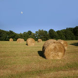 Idyllic field with hay bales in late summer Royalty Free Stock Images