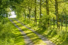 Idyllic field path. At spring time in Southern Germany Stock Photos