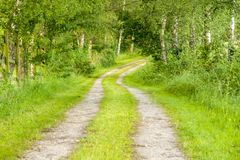 Idyllic field path. At spring time in Southern Germany Royalty Free Stock Images