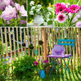 Idyllic garden collage Royalty Free Stock Photo