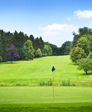 Idyllic golf course with forest and golf flag Royalty Free Stock Photos