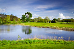 Idyllic golf course at the pond. Idyllic golf course with reflection in the pond Stock Image