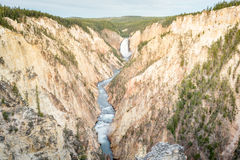 Idyllic Grand Canyon landscape in Yellowstone. Lower Falls in Yellowstone National Park during sunrise Stock Photography