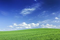 Idyllic view, green field and the blue sky with white clouds. Idyllic grassland, spring landscape, rolling green fields, blue sky and white clouds in the royalty free stock photo