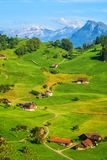 Idyllic green meadows and Alps mountains landscape, Switzerland stock photography