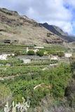 Idyllic hillside on La Palma Island, Spain royalty free stock photography