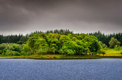 Idyllic island in the lake with green trees, Scotland Royalty Free Stock Photography