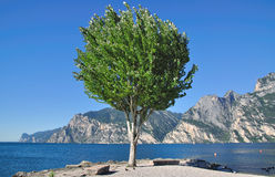 Idyllic Lake Garda,Italy Stock Photos