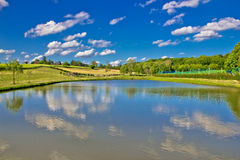 Idyllic lake in green landscape Royalty Free Stock Images