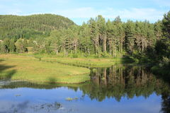 Idyllic lake in Norway Stock Images