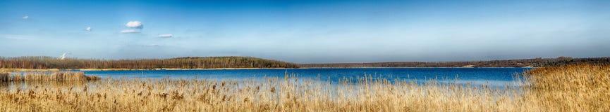 Idyllic Lake with reeds. And bue sky Stock Image